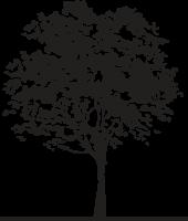 Christiaans Family Tree Retina Logo